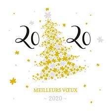 Meilleurs Vœux 2020 Resedia